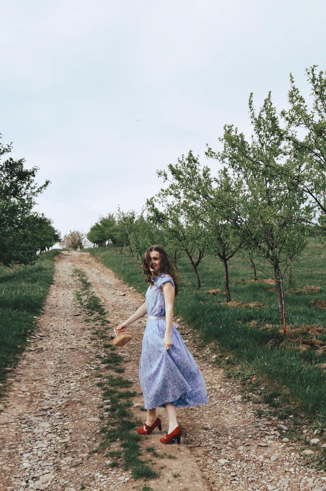 În dulcele stil clasic- Nichita Stănescu | Eseu BAC|Partea1